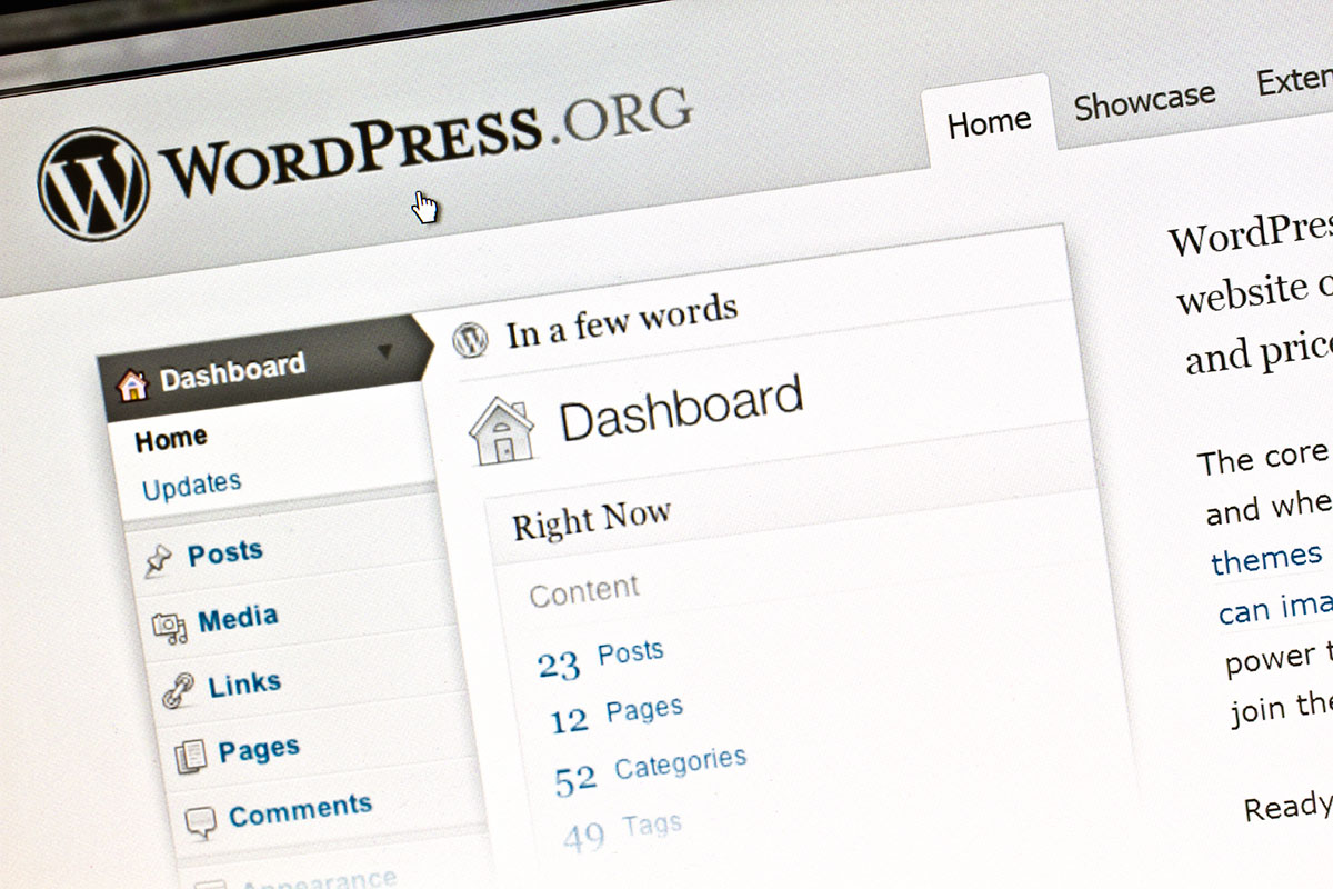 Building a WordPress Website for Artists with John D. Russell (Online Learning – One Session)